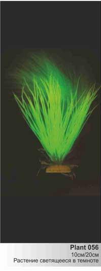 Светящееся в темноте пластиковое растение Акорус 20см  (Барбус)  Plant 056/20