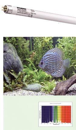 Лампа аквариумная SYLVANIA Т5 Aquaclassic 24Вт 54.9см, цоколь G5