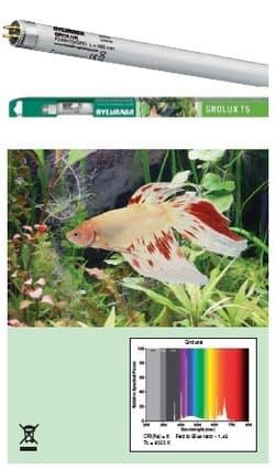 Лампа аквариумная SYLVANIA Т5 Grolux 24Вт 54.9см, цоколь G5