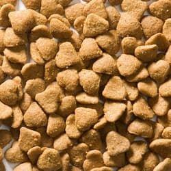 Корм GREENHEART-PREMIUMS Kitten Chicken and Rice 500 гр для котят и беременных кошек