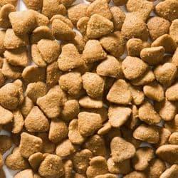 Корм GREENHEART-PREMIUMS Cat adult Chicken 10 кг безглютеновый рацион для всех кошек на основе мяса курицы