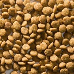 Корм GREENHEART-PREMIUMS 3D - struvite diet 4 кг супер-премиум класс, для профилактики и лечения мочеполовой системы взрослых и пожилых кошек