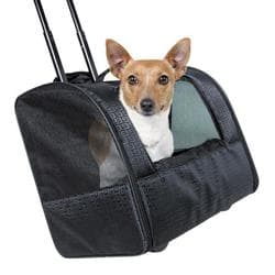 Транспортная сумка Trolley Elegance 45х41х31 см, черный артикул 2881 до 10кг