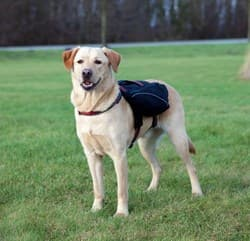 Трикси Шлейка-рюкзак для собаки, L: 29х15 см, чёрный, арт.28833