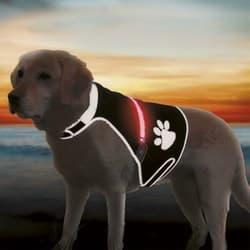 Трикси Светящаяся попона для собак USB, S: 36–58 см, чёрная, арт.30215