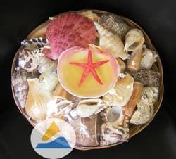 Набор раковин в корзинке для аквариума (18см)