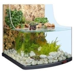 Акватеррариум reptil aqua biotop