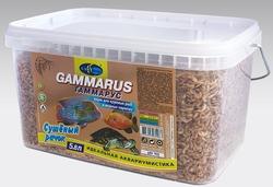 ГАММАРУС 5,8л/600г- сушеный рачек (Gammarus pulex) корм для крупных рыб и водных черепах (ведро) (шт.)